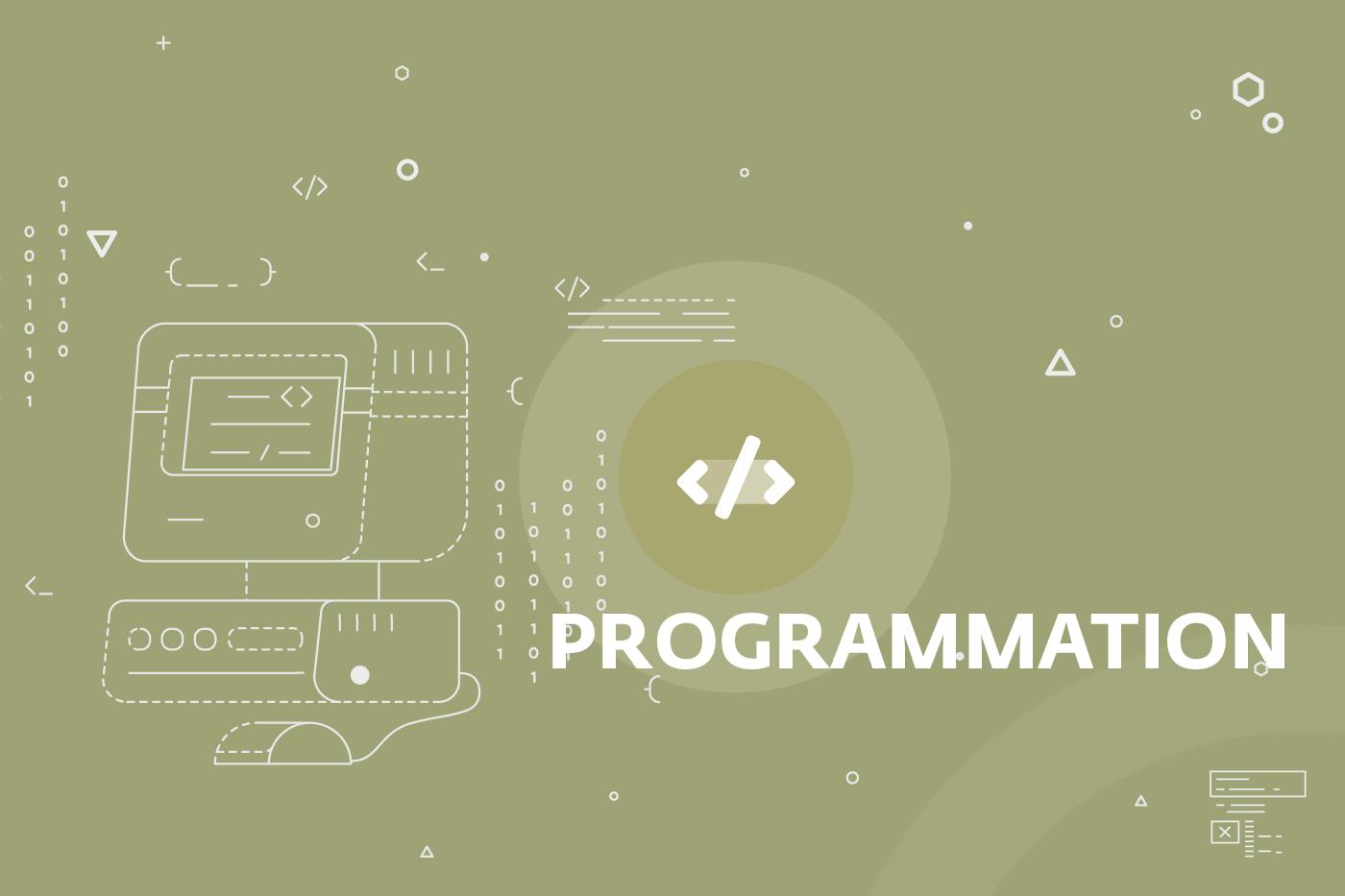 visuel spécialité Programmation